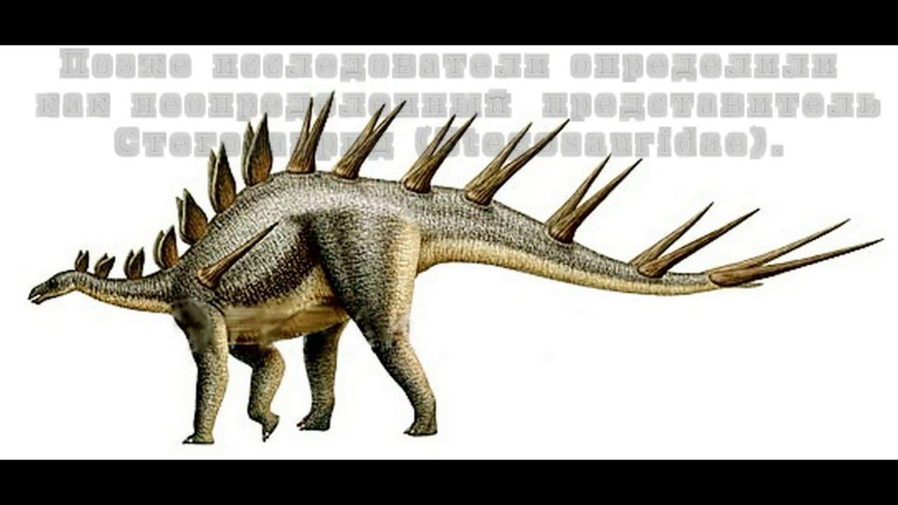 Monkonosaurus