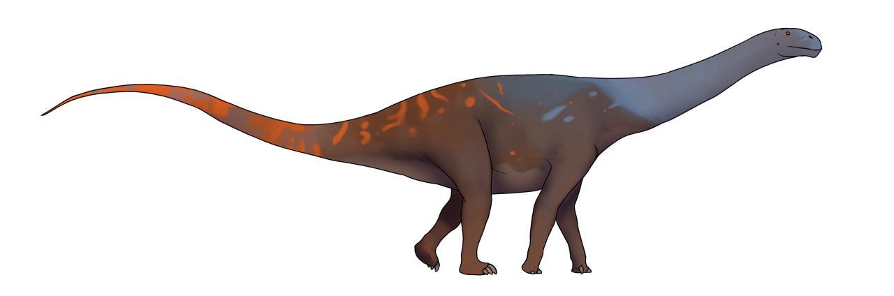 Morinosaurus