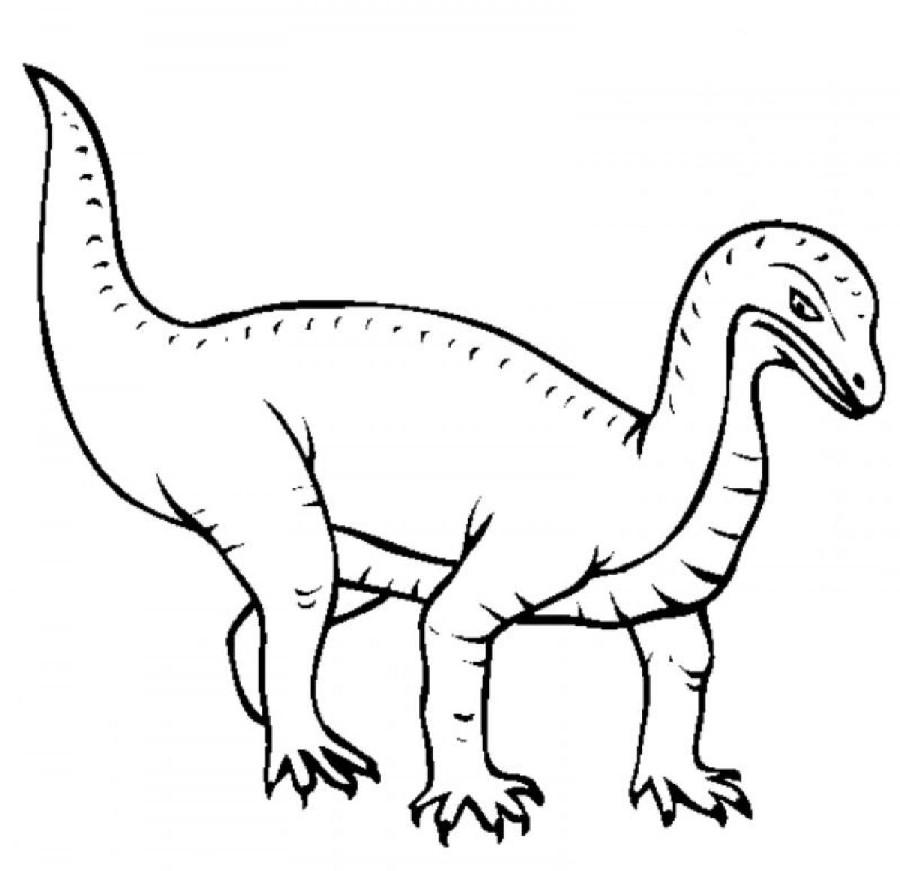Mussaurus Pictures Facts