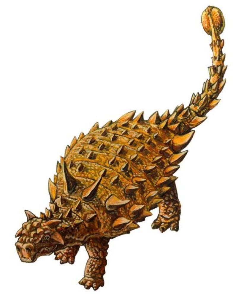 Nodocephalosaurus