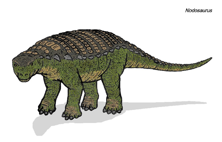 Dinosaur Train Nodosaurus nodosaurus pictures & facts - the dinosaur ...