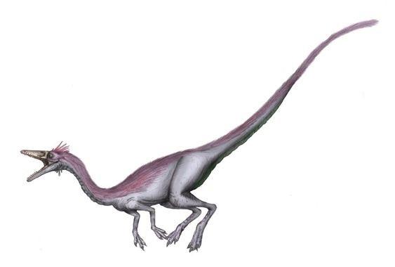 Resultado de imagen de nqwebasaurus