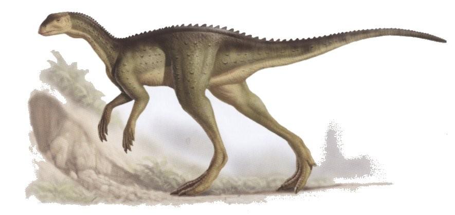 Dinosaure Oryctodromeus