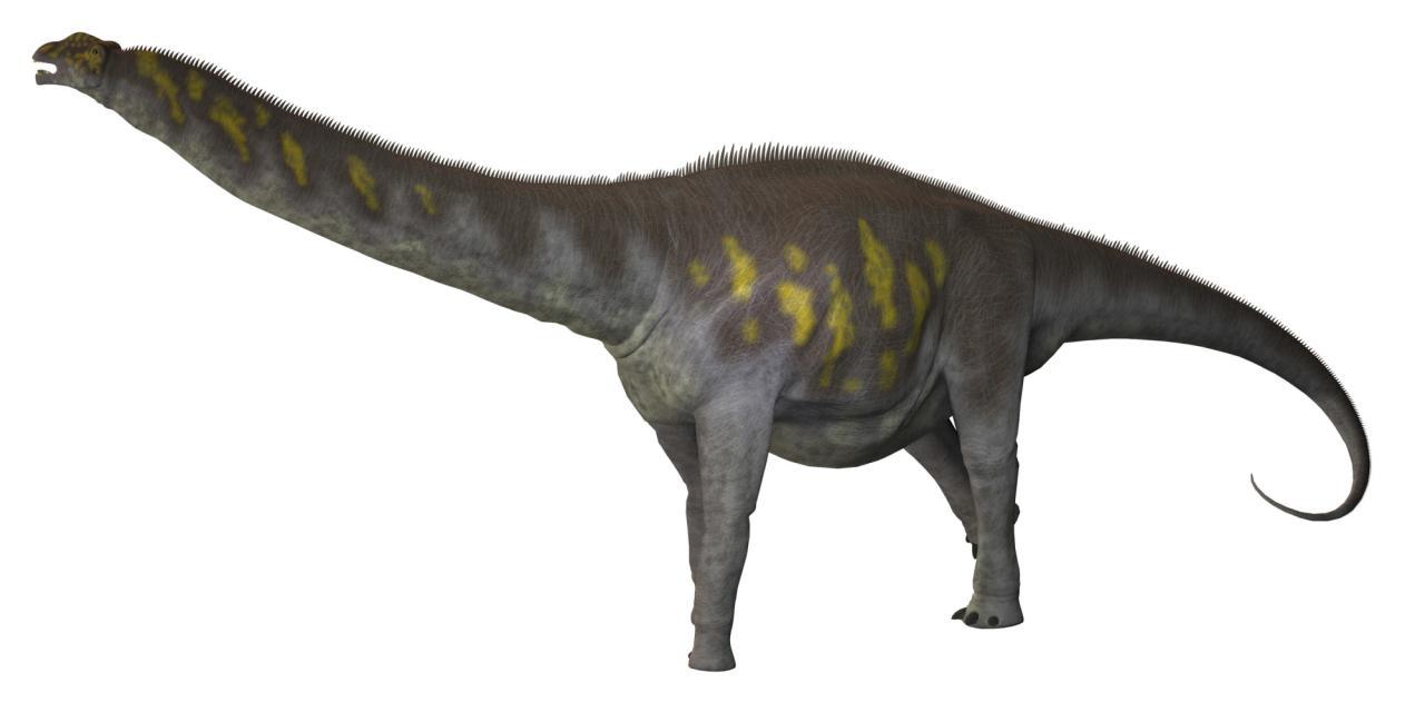 Pakisaurus