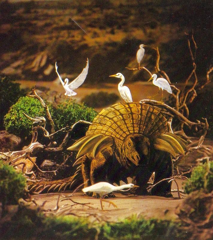 Palaeoscincus