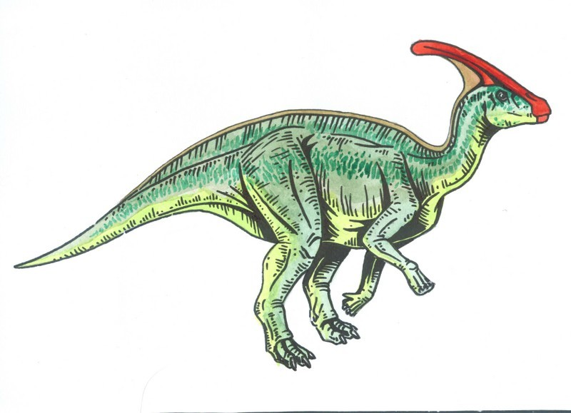 Saurolophus Pictures on showthread