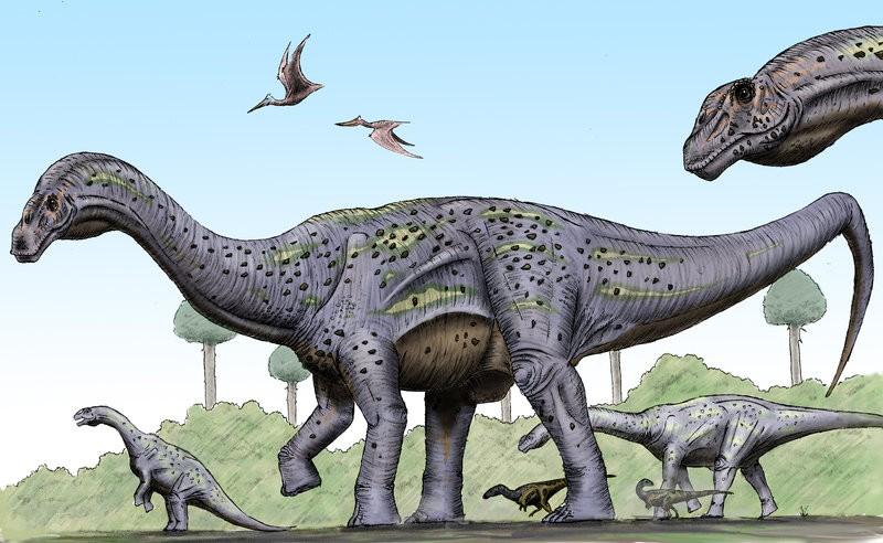 Pitekunsaurus
