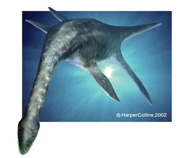 Plesiosaurus Pictures ...