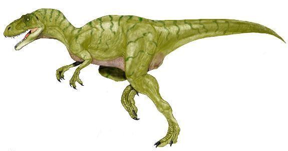 Poekilopleuron Pictures & Facts - The Dinosaur Database
