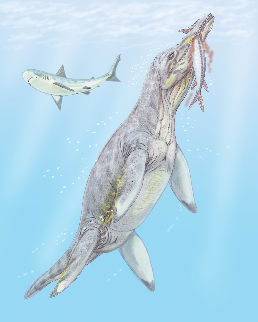 Polyptychodon