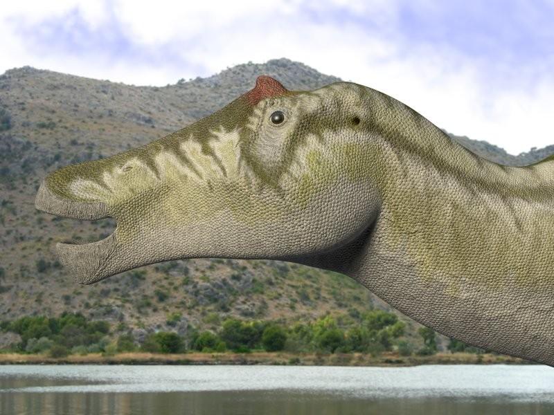 Prosaurolophus