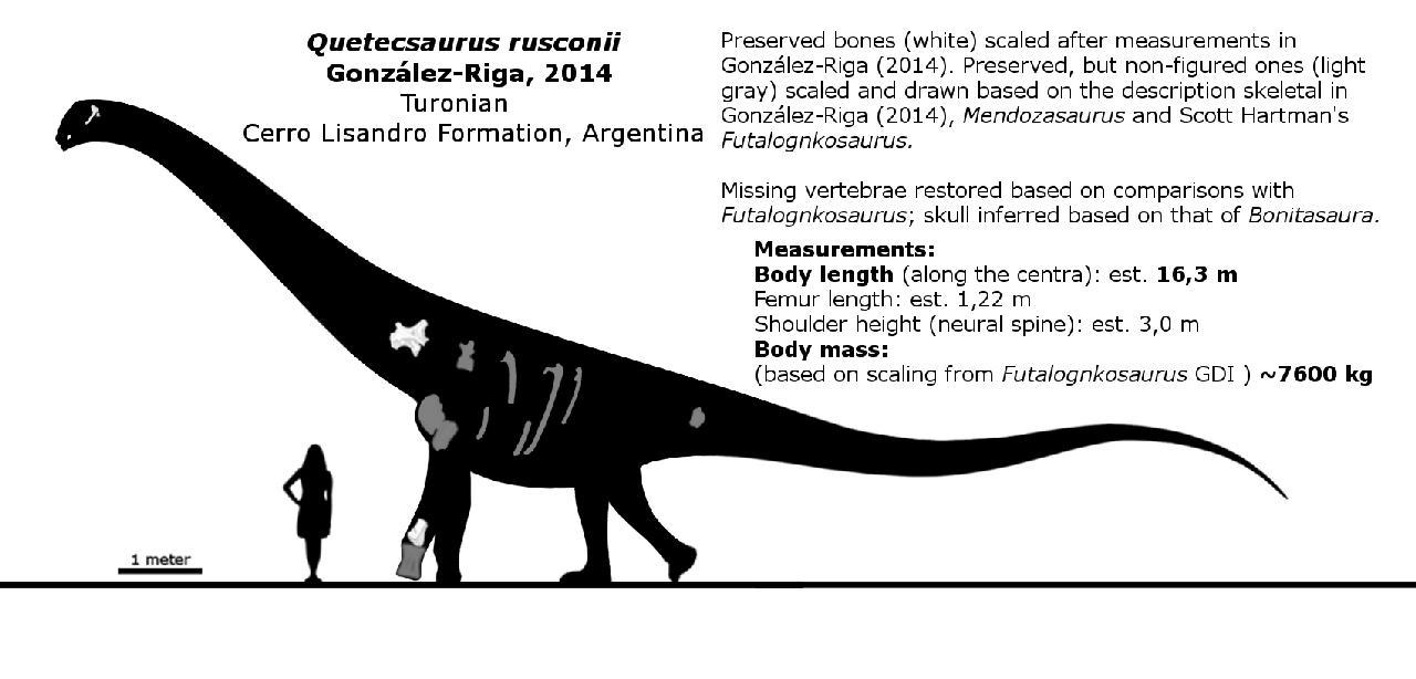 Quetecsaurus