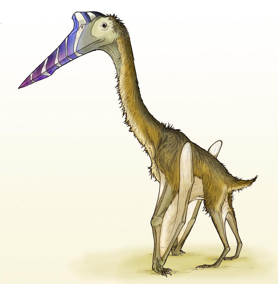 quetzalcoatlus pictures u0026 facts the dinosaur database