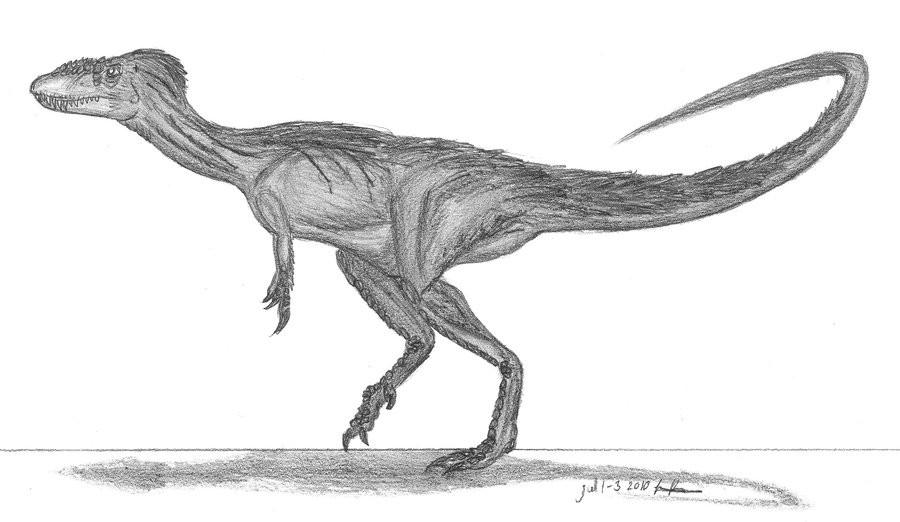 сша картинки динозавров рапторекс увеличенного диаметра шины