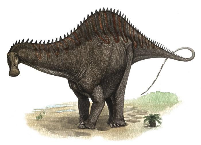 Rebbachisaurus-Andrey-Atuchin_e4bd.jpg