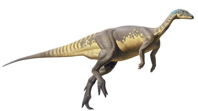 Eousdryosaurus