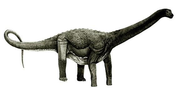 Ruyangosaurus