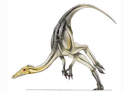 Sanchusaurus