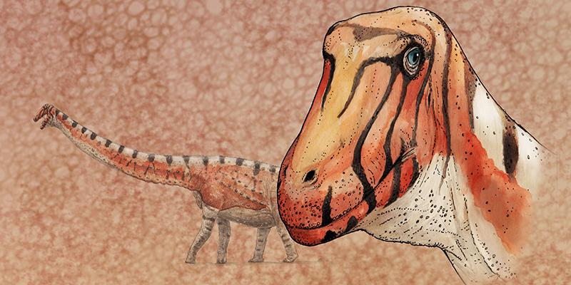 Sarmientosaurus