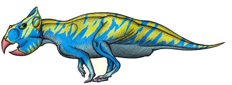 Serendipaceratops