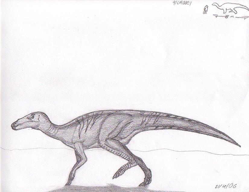 Shuangmiaosaurus