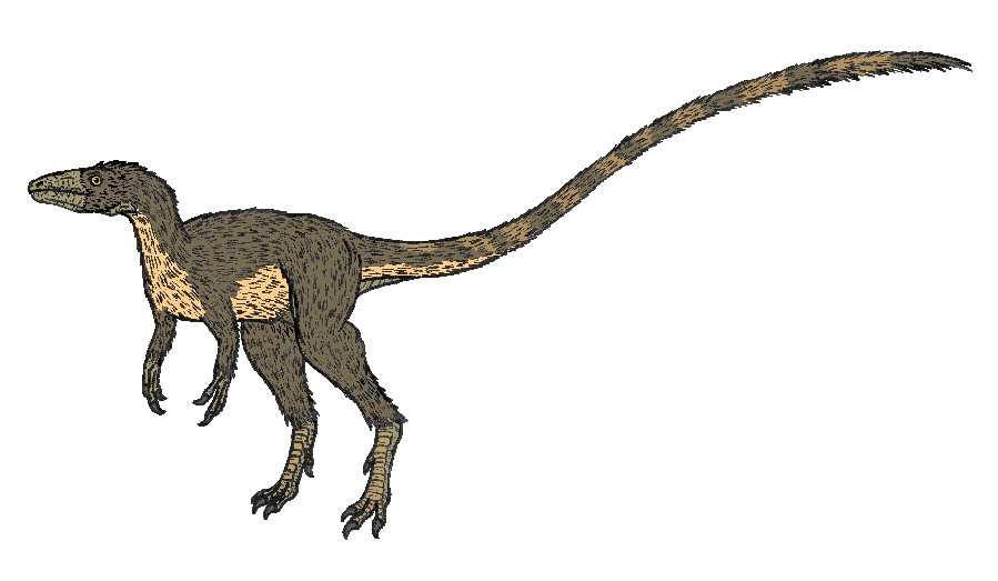 dating dinosaurs wiki Dinosauria, or commonly called dinosaurs, are a diverse group of reptiles  [31] [32] radiometric dating of the rock formation that contained fossils from the early dinosaur genus eoraptor establishes its presence in the fossil record at this time.