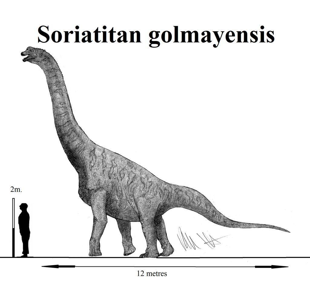Soriatitan