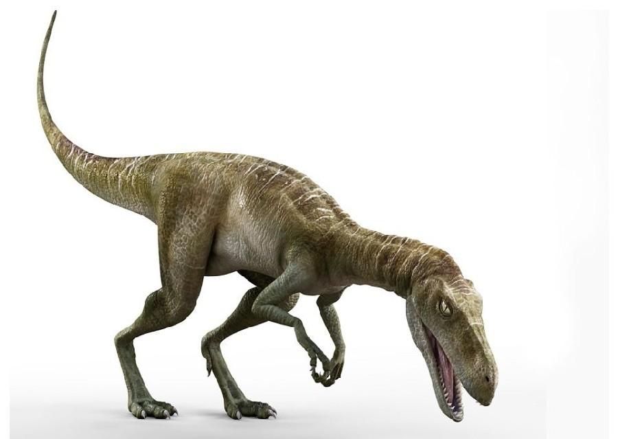 http://images.dinosaurpictures.org/Staurikosaurus_2500.jpg