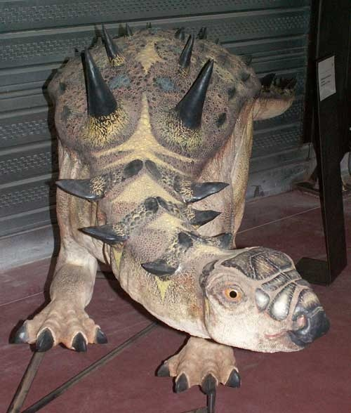 Struthiosaurus
