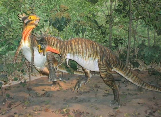 Stygimoloch Pictures Amp Facts The Dinosaur Database