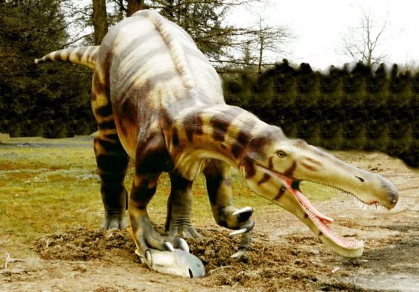 Suchosaurus