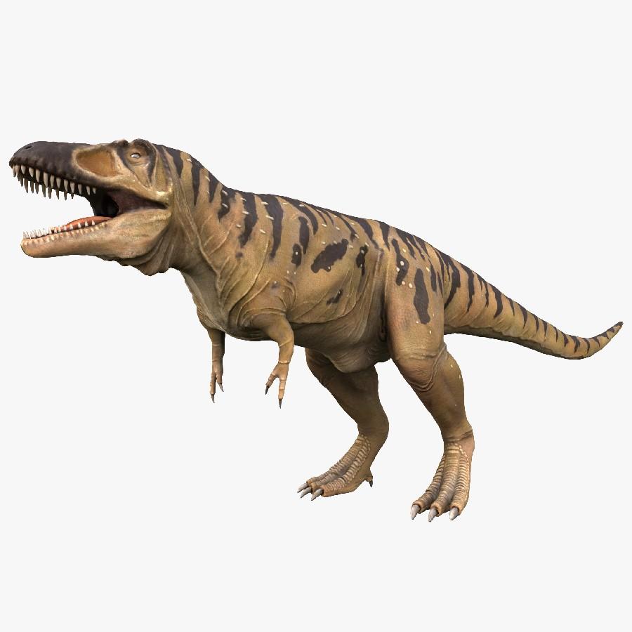 Tarbosaurus Pictures & Facts - The Dinosaur Database