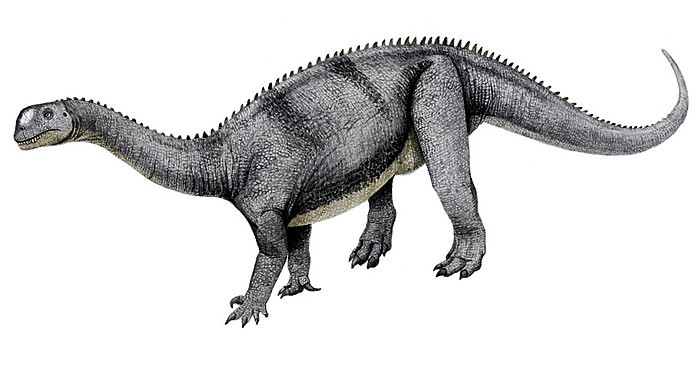 Tazoudasaurus