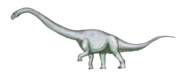Tehuelchesaurus