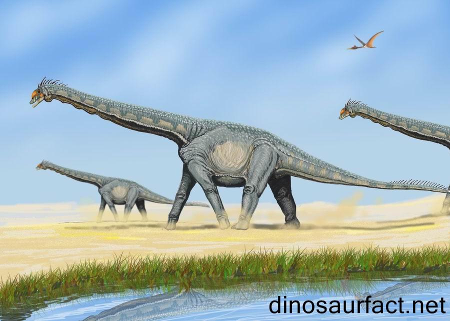 Thotobolosaurus