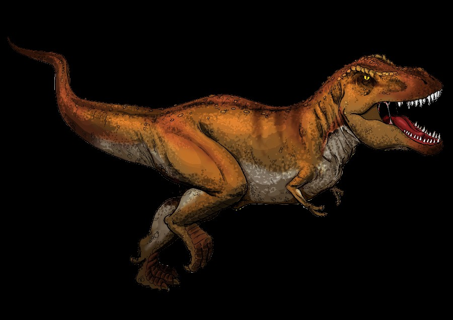 Tyrannosaurus Pictures & Facts - The Dinosaur Database