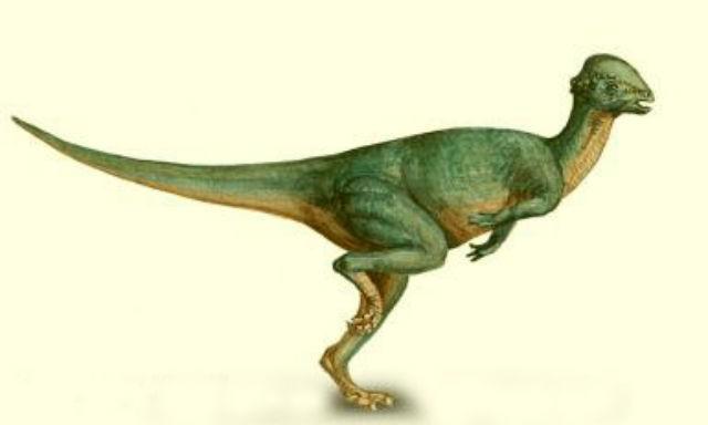 Wannanosaurus Pictures Amp Facts The Dinosaur Database