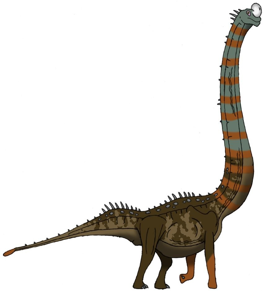 omeisaurus pictures u0026 facts the dinosaur database