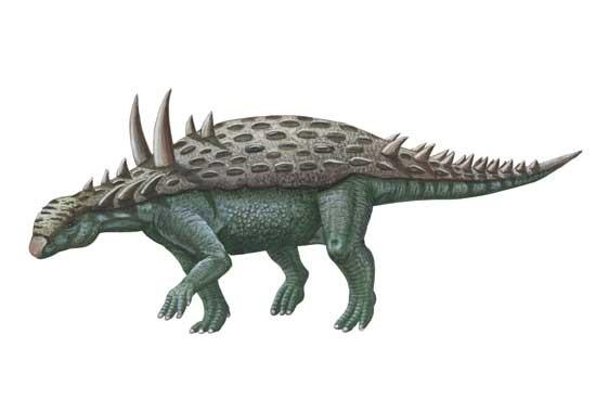 Acanthopholis (Акантофолис), Cretaceous (Меловой период)