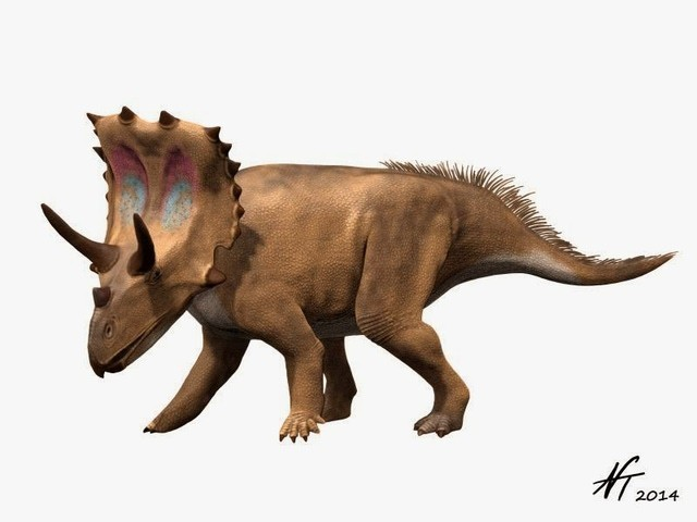 Agujaceratops