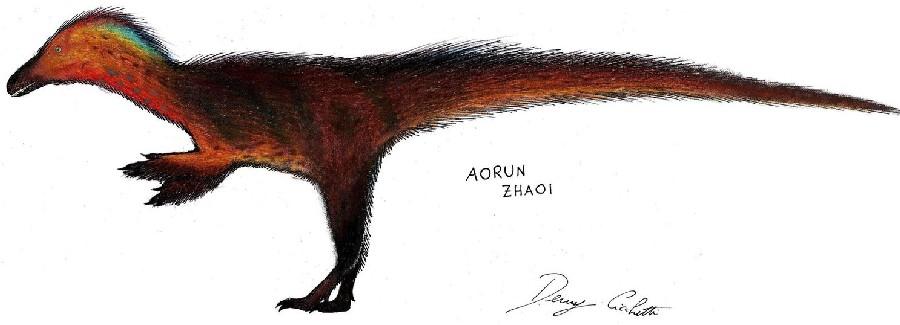 Aorun