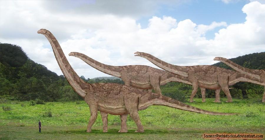 Le refuge de la louve intrépide - Portail Argentinosaurus_by_sameerprehistorica-d5ybujd_d302