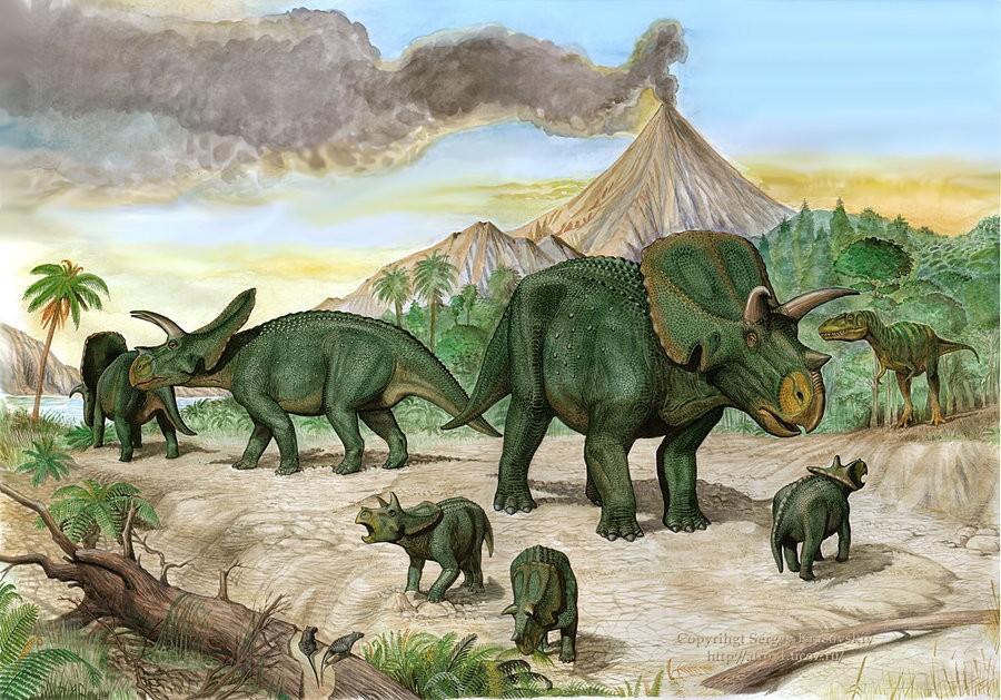 Arrhinoceratops Pictures & Facts - The Dinosaur Database  Arrhinoceratops...
