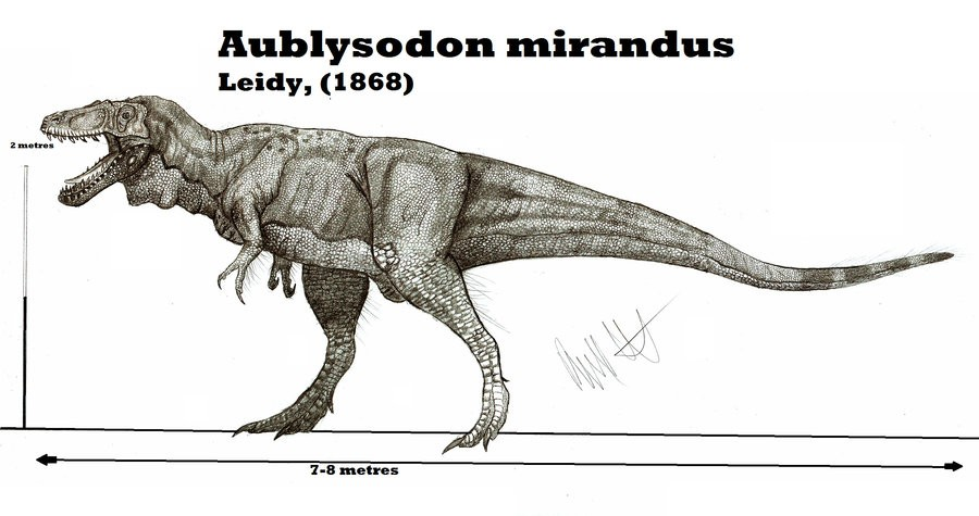 Aublysodon