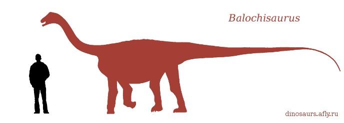 Balochisaurus