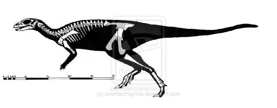 Changchunsaurus