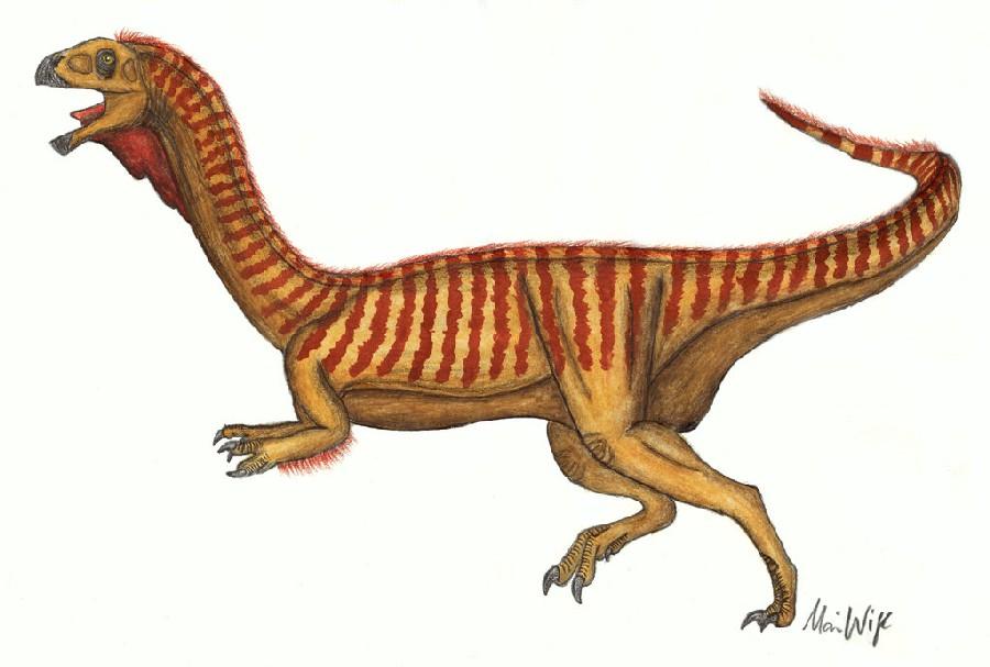 Arcovenator