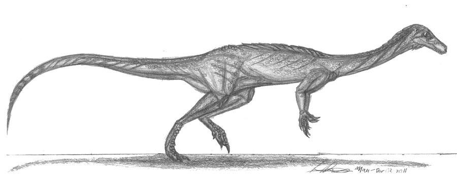 Chromogisaurus