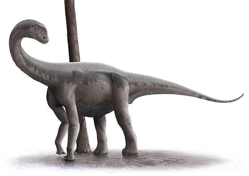 Resultado de imagen de algoasaurus