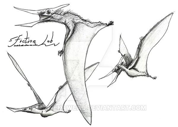 Eopteranodon